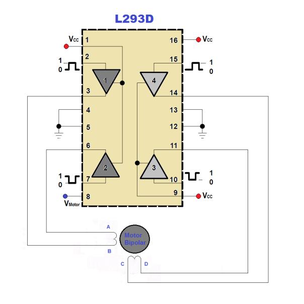 L293D_PaP